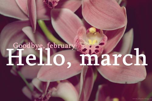 Hello march 2015 1